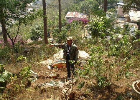 Ông Minh trong khu vườn vừa bị cưỡng chế